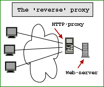 reverse proxy What is a Reverse Proxy Server?